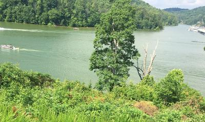 Campbell County Residential Lots & Land For Sale: Cameron Loop, Lot #31