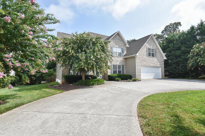 Knoxville Single Family Home For Sale: 1115 Long Branch Drive