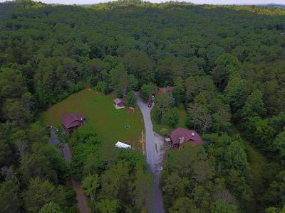 Sevierville Single Family Home For Sale: 505 Allensville Acres Rd