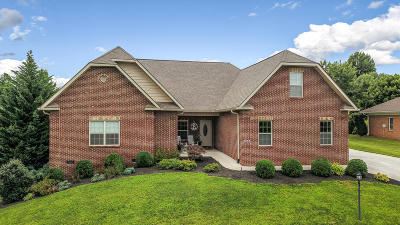 Maryville Single Family Home For Sale: 3033 Champions Drive