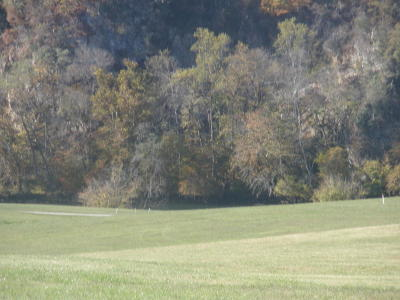 Grainger County Residential Lots & Land For Sale: River Stone Drive