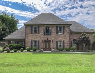 Knoxville Single Family Home For Sale: 10706 Eagle Glen Drive