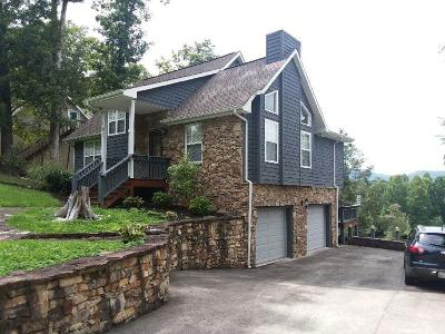 Campbell County Single Family Home For Sale: 107 Turtle Point Lane