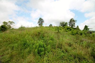 Grainger County Residential Lots & Land For Sale: Howell Rd