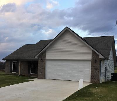 Maryville Single Family Home For Sale: 518 Valley Vista Way