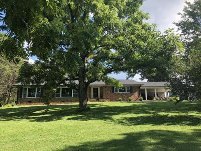 Corryton Single Family Home For Sale: 8520 Tazewell Pike
