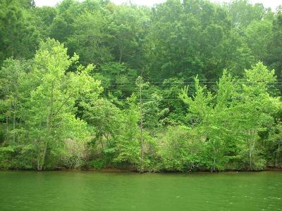 Meigs County, Rhea County, Roane County Residential Lots & Land For Sale: 38.02 Clearwater Drive