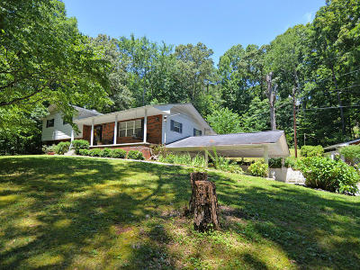 Heiskell Single Family Home For Sale: 199 Davidson Hollow Rd
