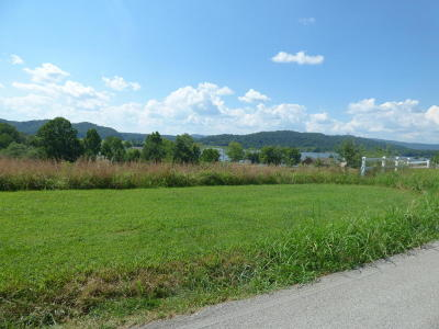 Meigs County, Rhea County, Roane County Residential Lots & Land For Sale: 538 Emory River Rd, Lot 11