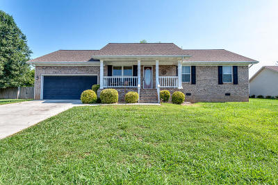 Maryville Single Family Home For Sale: 5509 Brandon Park Drive