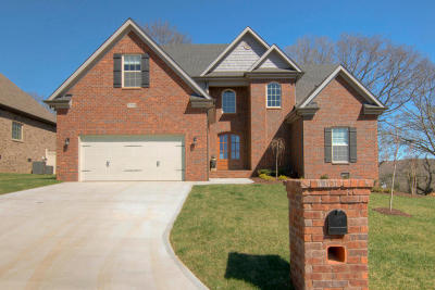 Knoxville Single Family Home For Sale: 2312 Omaha Lane