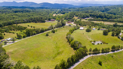 Sevierville Residential Lots & Land For Sale: Flat Creek Road