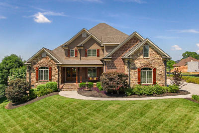 Knoxville Single Family Home For Sale: 551 Stone Villa Lane
