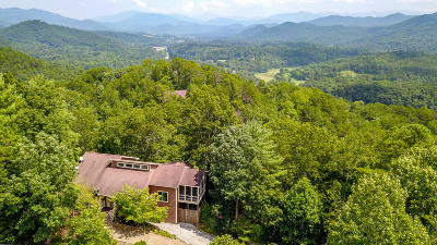 Townsend Single Family Home For Sale: 107 Big John Cove
