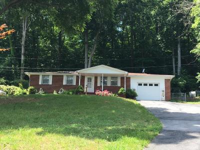 Grainger County Single Family Home For Sale: 151 Peninsula Drive