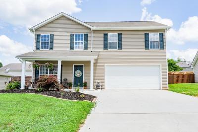 Loudon Single Family Home For Sale: 751 Kline Dr Drive