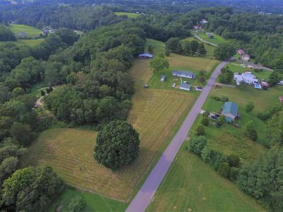 Lafollette Single Family Home For Sale: 771 Coolidge Rd