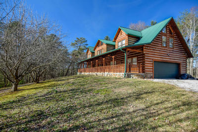 Vonore Single Family Home For Sale: 1570 Mount Pleasant Rd