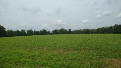 Residential Lots & Land For Sale: 77.20 Smalling Rd