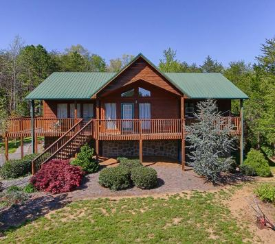 Sevierville Single Family Home For Sale: 2401 Burke Ave