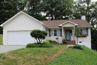 Anderson County, Blount County, Knox County, Loudon County, Roane County Single Family Home For Sale: 275 Matlock Shores Rd