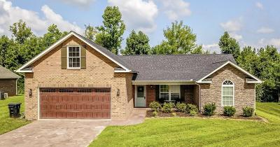 Maryville Single Family Home For Sale: 723 Peachtree Drive