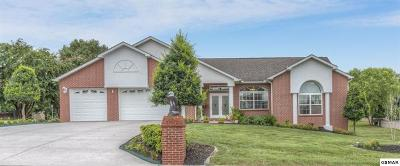 Sevierville Single Family Home For Sale: 615 Riverbrook Drive