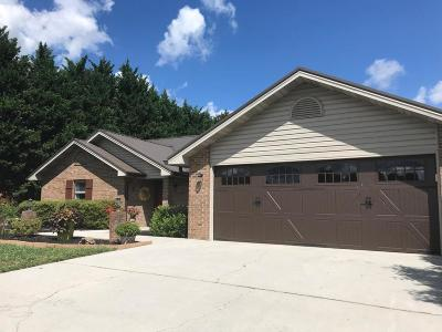 Sevierville Single Family Home For Sale: 1320 Sarek Ave