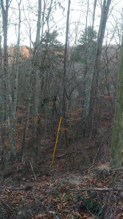 Sevierville Residential Lots & Land For Sale: Lot 9 &10 Waldens Creek Rd Off Rd
