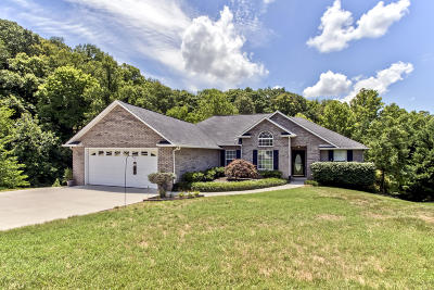 Knoxville Single Family Home For Sale: 5001 Reliant Lane