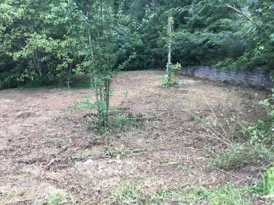 Powell Residential Lots & Land For Sale: 1717 W Copeland Drive