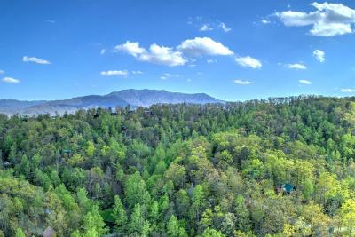 Sevierville Residential Lots & Land For Sale: Lot 1239 Cedar Pass
