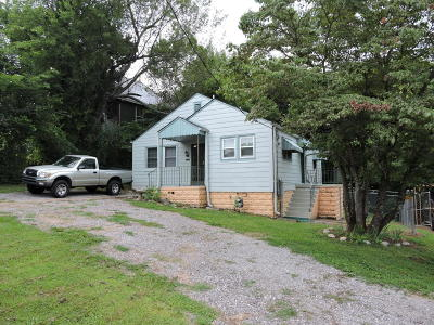 Knoxville Single Family Home For Sale: 1514 Washington Pike