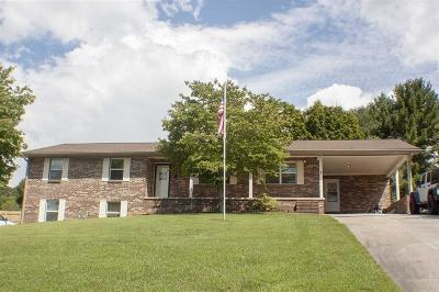 Jefferson City Single Family Home For Sale: 1407 Clinch View Circle