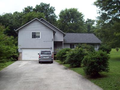 Lafollette Single Family Home For Sale: 128 Mohawk Tr