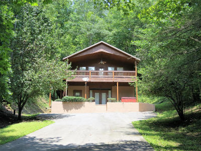 Sevierville Single Family Home For Sale: 3535 Birds Creek Rd