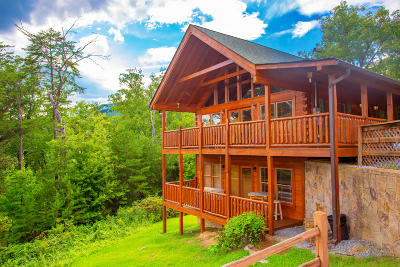 Sevierville Single Family Home For Sale: 1713 Bear View Rd