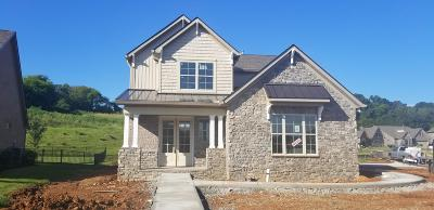 Knoxville Single Family Home For Sale: Briarstone Lane