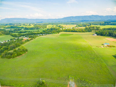 Maryville Residential Lots & Land For Sale: Tract 6 Sevierville Rd