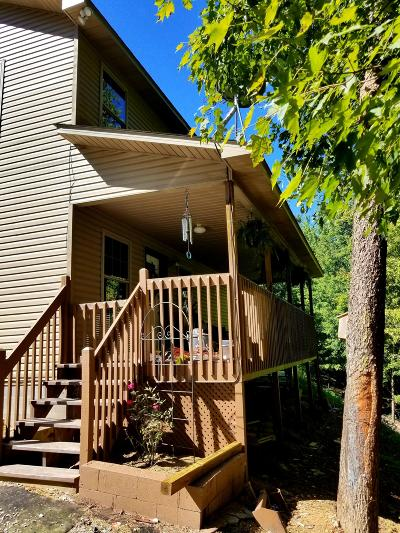 Sevierville Single Family Home For Sale: 1840 Blackberry Way