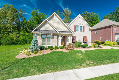 Knoxville Single Family Home For Sale: 438 Turkey Cove Lane