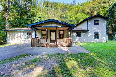 Sevierville Single Family Home For Sale: 3032 Pine Haven Dr