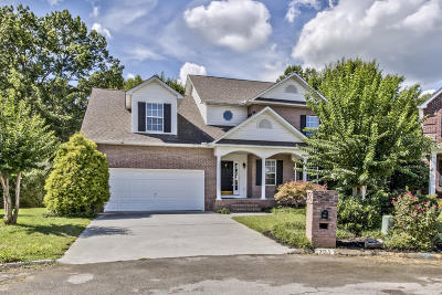 Knoxville Single Family Home For Sale: 701 Briar Way