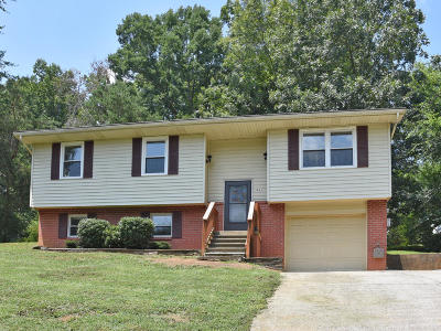 Maryville Single Family Home For Sale: 3843 Melissa Lane
