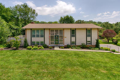Knoxville Single Family Home For Sale: 10704 Pinedale Drive