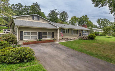 Knoxville Single Family Home For Sale: 4733 Santala Drive
