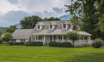 Sevierville Single Family Home For Sale: 3539 Hiley Drive