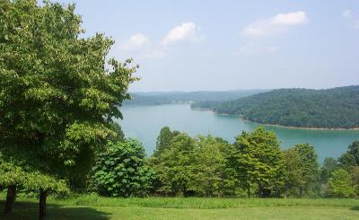 Campbell County Residential Lots & Land For Sale: Holly Lane