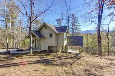 Sevierville Single Family Home For Sale: 3539 Birds Creek Rd