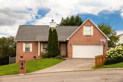 Maryville Single Family Home For Sale: 1219 Mishas Way